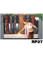 ภาพสำหรับประดับตกแต่งบ้าน ร้านสปา คอนโด โรงแรม รีสอร์ท RP - 37