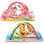 Gymini Kick n Play Total Playground