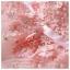 Z-0021 ชุดไปงานแต่งงานน่ารัก แขนมี สุดหรู สวย เก๋น่ารัก ราคาถูก สีชมพู ชุดสั้น thumbnail 4