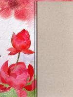 Boxset บุปผาสีชาด ภาคสอง (สองเล่มจบ) 美人谋 ปิงหลันซา (冰蓝纱) แจ่มใส มากกว่ารัก
