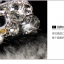 OPPO Yoyo - Hi-So Fox Case [Pre-Order] thumbnail 4